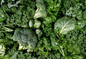 Top 10 Calcium Rich Foods For Stronger Bones